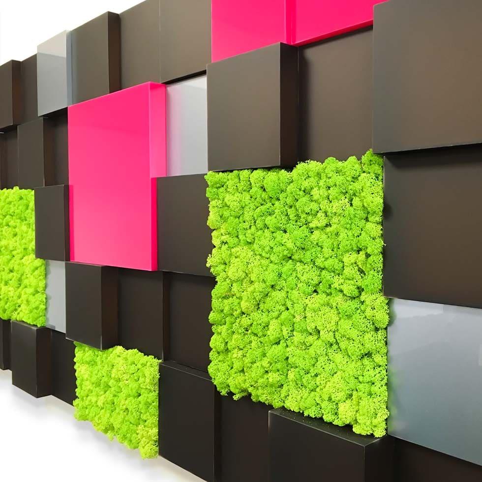Egyedi faldekoráció plasztikusan kiemelt és besüllyesztett plexielemekből zuzmólapokkal.